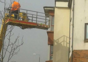 installation of Bird Free system on building