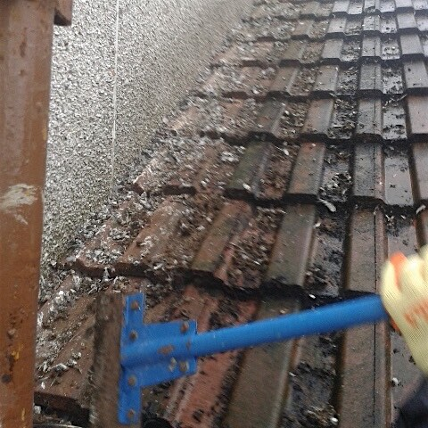 Pigeon Guano on roof in Neilston, Glasgow