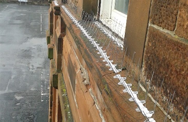 Anti-bird spikes installed at Troon Primary, Ayrshire