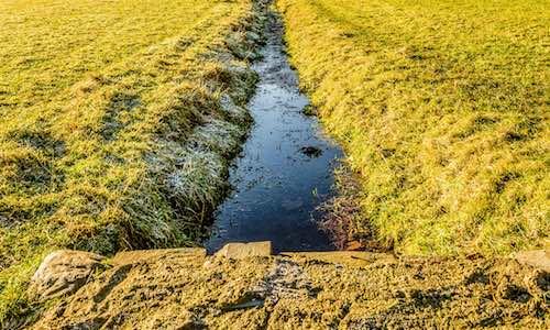 Field drains