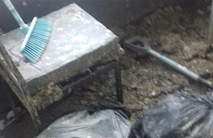 Pigeon Guano Removal, Scotstounhill, Glasgow C Hanlon Pest Control