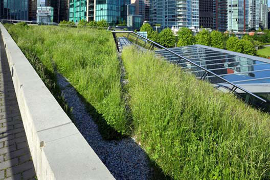 Commercial Green Roofing Services Glasgow Edinburgh