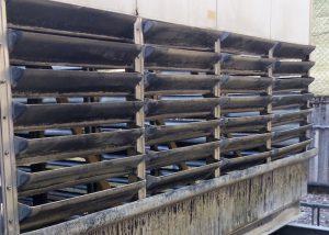 Bird Prevention Netting Installation Perth